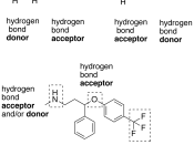 English: Illustration of hydrogen bond donors and acceptors both as groups (in prozac) and molecules (ammonia and water)