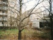 English: Pripyat, Ukraine abandoned city near Chernobyl. Italiano: Uno scorcio di Pripyat, città abbandonata in Ucraina vicino a Chernobyl.