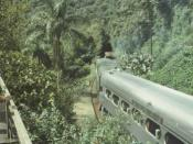 train in Tropical rainforest created by משתמש:בן הטבע