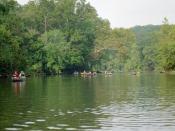Canoers enjoy a float trip on the Meramec below Leasburg