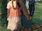 Tongan farmer showing off his prized yams.