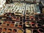 English: Leather tanning, Fes, Morocco Français : Tannage du cuir, Fès, Maroc