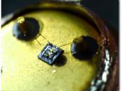 English: Inside BF505 MESA Transistor TEWA Polski: Wnętrze tranzystora MESA BF505 produkcji TEWA