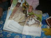 A child with an illustrated book of Three Billy Goats Gruff