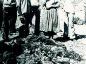 Turkish Cypriot corpses after the Maratha, Santalaris and Aloda massacre, committed by EOKA-B on 14 August 1974