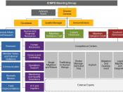 English: The orgnisational structure of ICMPD