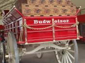 English: A rear view of the Budweiser beer wagon on display in Stampede Park during the Calgary Stampede.