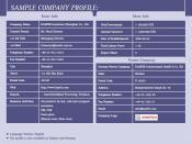 English: Sample Company Profile