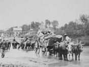 English: Fugitive African Americans fording the Rappahannock, fleeing from Jackson's army. [Stereograph]