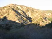English: Scrubland in Aliso Canyon, Santa Susana Mountains, California: December 24, 2005.