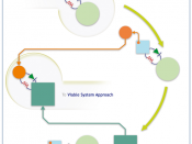 English: Viable Systems Approach
