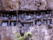 Toraja burial site. Toraja is an ethnic group in West and South Sulawesi, Indonesia