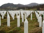 English: Gravestones at the Potočari genocide memorial near Srebrenica Deutsch: Grabsteine an der Völkermord-Gedenkstätte in Potočari in der Nähe von Srebrenica