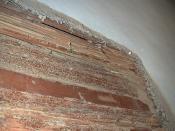 More Termite Damage