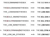 Effetto delle mutazioni da scivolamento (Frameshift Mutations)