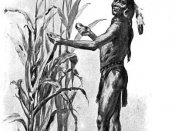 English: How Well The Corn Prospered. Squanto or Tisquantum demonstrating corn he had fertilized by planting with fish.