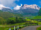 Taken from Munnar , Kerala One of the most popular hill stations in India, Munnar (Kerala) is situated at the confluence of three mountain streams - Mudrapuzha, Nallathanni and Kundala. Located at 1600 M above sea level, this was once the summer resort of