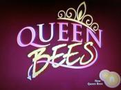 Queen Bees (TV series)