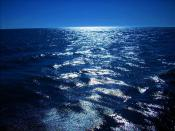 Baltic Sea.