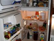 the fridge is full!