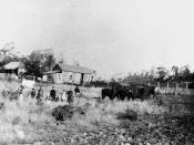 English: German farming family and farm in Fassifern, ca. 1890