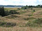 View over part of the Thy Nationalpark (Denmark) at Hanstholm vildtreservat and Tved klitplantage.