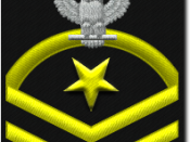 US Navy Master Chief Petty Officer of the Navy shoulder patch rate insignia
