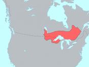 Pre-contact distribution of the Plains Ojibwe, Southwestern Ojibwe (Chippewa), and Algonquin dialects of the Ojibwe language