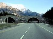 Trans-Canada Highway in Alberta, Canada, in the Banff National Park, between Banff and Lake Louise