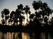 Echo Park in Los Angeles, United States (North America)