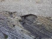 English: Sedimentary Rock near Arles, France