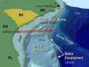 Diagram of the continental shelf and slope of the southeastern United States leading down to the ocean floor.