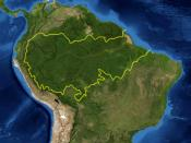 This is a map location of the Amazon Basin. The yellow line encloses Amazon Basin as delineated by the World Wide Fund for Nature. National boundaries are shown in black. I, Pfly, made it using NASA Blue Marble imagery and ecoregion GIS data which I simpl