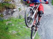Royal Air Force Mountain Biker
