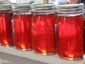 Mississippi Honey