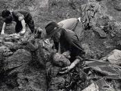 Exhumations in Srebrenica, 1996.
