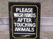 Black Country Living Museum - sign - Please wash hands after touching animals