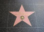 Arnold Schwarzenegger's star on the Hollywood Walk of Fame