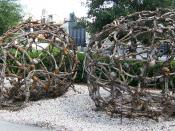 The two bone cages used in the 2006 film Pirates of the Caribbean: Dead Man's Chest, featured on The Disney-MGM Studios Backlot Tour at Disney-MGM Studios. In the film, the two cages hold various captors and are suspended by vines. Image taken on July 26,