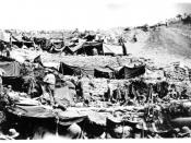 English: New Zealand soldiers' encampment at Anzac Cove 1915.