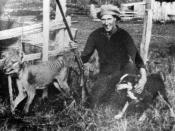 Wilfred Batty of Mawbanna, Tasmania, with the last Tasmanian Tiger known to have been shot in the wild. He shot the tiger in May, 1930 after it was discovered in his hen house.