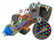 Illustration showing the interior of a cathode-ray tube for color televisions and monitors.