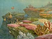 Ancient Coral Reefs Español: Antiguas Arrecifes de Coral