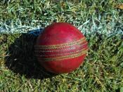 Many young British Pakistanis play cricket for recreation