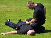 English: SAN DIEGO (May 6, 2010) Navy law enforcement members practice handcuffing techniques during the Navy Security Forces Training Course, a pilot program at Naval Air Station North Island. The program simultaneously trains civilian and military polic