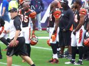 English: Ochocinco and TO at Gillette stadium.