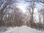University of Wisconsin - Madison Arboretum, Madison, Wisconsin, USA.