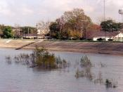 Mississippi River levee at Gretna, Louisiana. High water on the Mississippi covers plants along the bature (river side of the levee); the levee protects the town of Gretna from flooding. Photo by Infrogmation, March, 2005.