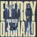 Pain Killer (Energy Orchard album)