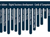 Digital business development - competence comb for Per Axbom